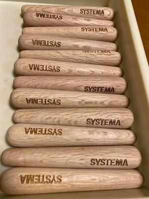 システマコンディショニングスティック 2本セット Systema Conditioning Stick 2sticks