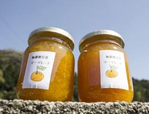 大分県産フルーツ使用の手作り  無農薬で栽培 甘夏みかんのマーマレードジャム(200ml)