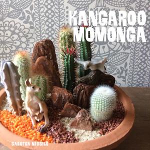 カンガルー&モモンガ