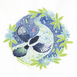 【南極ホタル堂】 原画「カササギ×ブルースター」