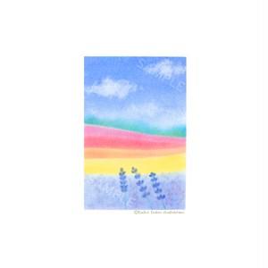 【選べるポストカード3枚セット】No.88 ラベンダー②