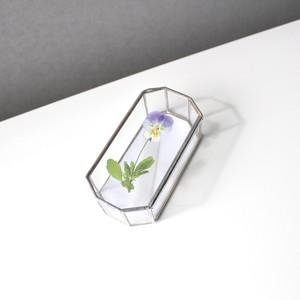 ビオラ(紫) / A piece of nature Box