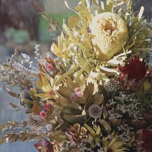 季節のおまかせ 籠花 M