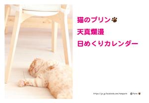 猫のプリン天真爛漫日めくりカレンダー
