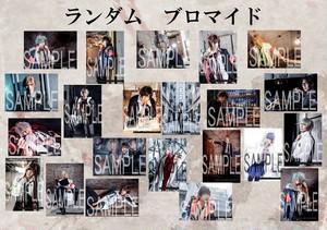 舞台『Collar×Malice -岡崎契編‐』ランダムブロマイド5枚組