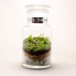 苔のテラリウム ペンギンの丘の風景 薬瓶250ml