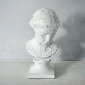 Dried Flower Bust