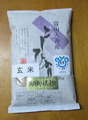 H.29産新米 富山県産特別栽培米こしひかり 玄米2kg