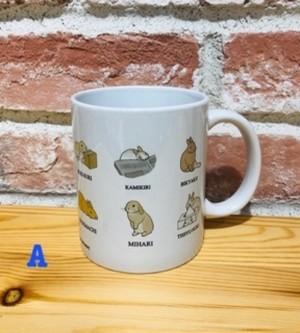 うさぎんちゃこイラスト マグカップ