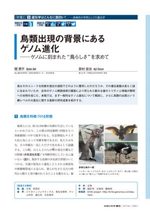 2017年7月発行号/特集I/田村 宏治 氏