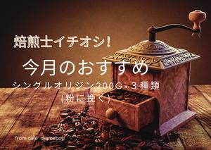 焙煎士イチオシ! 今月のシングルオリジン選ぶ楽しみ♪ 200g×3種類 粉に挽く【送料無料】