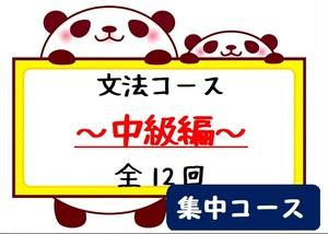 文法コース~中級編~集中コース