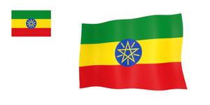 エチオピア・モカ 100g