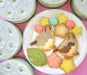 キンカチョウのクッキー缶