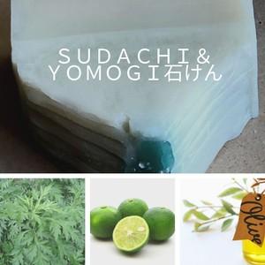 【定期便】SUDACHI&YOMOGI石けん 100g お家で森林浴 Herb・Room leaf 肌にやさしいソープ 碧ものがたり