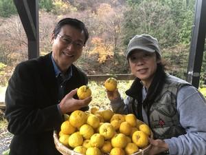 【季節限定】 柚子ヴァイツェン330ml 6本セット/ Yuzu Fruits Ale