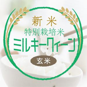 新米・特別栽培米 ミルキークイーン 玄米30kg〈1週間以内で発送〉