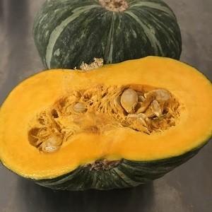 【シーズン始まりました!】天草産栗かぼちゃ  恋するマロン1.2~1.4Kg 農薬不使用