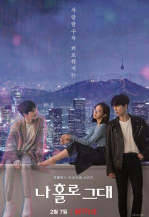 ☆韓国ドラマ☆《愛しのホロ》DVD版 全12話 送料無料!
