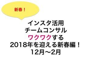 【定期便3ヶ月】インスタ活用チームコンサル ワクワクする2018年を迎える新春編!