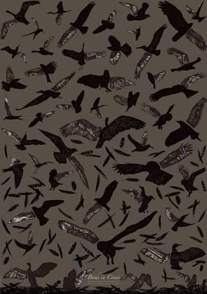 Poster[Birds in Crisis]