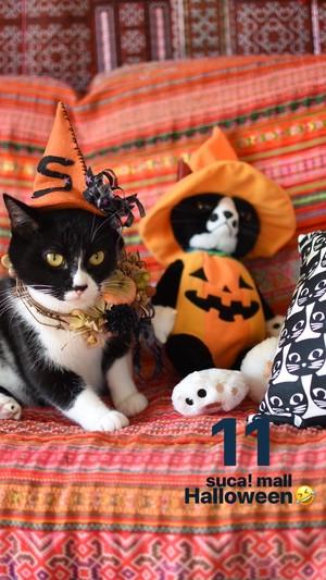 11*Halloween!! スカとおそろいリース☆