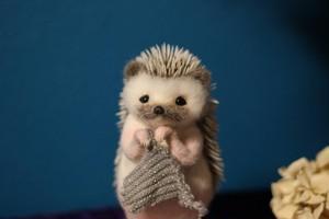 Wipe-cleaning Hedgehog