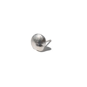 Seashell Stud Earring