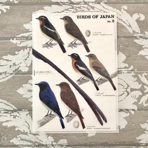 日本の野鳥クリアファイル  No.2