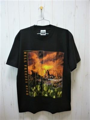 Eagles World Tour 1994 T-Shirt/Dead Stock (イーグルス ワールドツアー 1994/デッドストック・未使用)