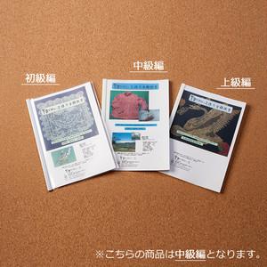 吉田バテンレース作り方解説書【中級編】【YBL-TXT-02】