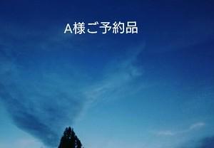 【A様ご予約品】