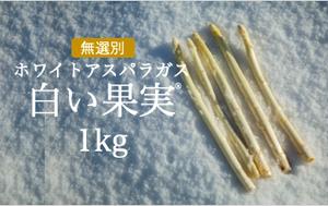 【2/15以降出荷】まるで果実!?ホワイトアスパラガス MIX(3L~L/500g×2袋)