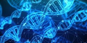 DNAシャクティ・パーソナルレベル