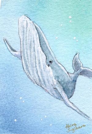 【ミニ原画】海の仲間たち④