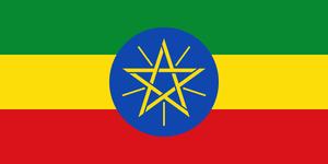 エチオピア イルガチェフェ ベレカ G1