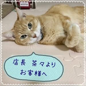 〜 お客様へ 〜