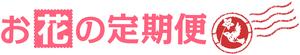 W8140)【定期便】月1回エクストラコース