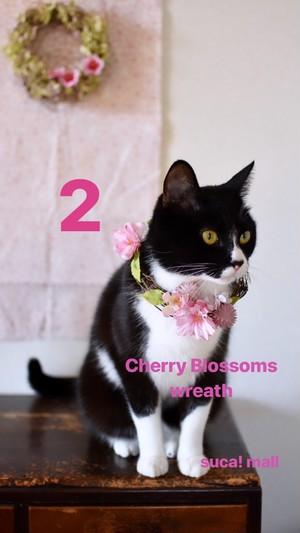 2:八重桜とソメイヨシノとピンクのクローバー*スカとおそろい♪桜のリース♪*