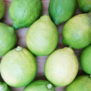グリーンレモン【3kg】