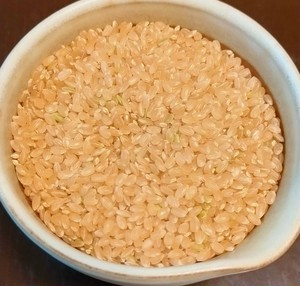 エコファーマーの玄米5kg