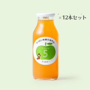 すっぱいりんごジュース【レベル5】12本セット