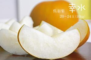 幸水10kg(20~24玉)       お届け時期8月中旬〜