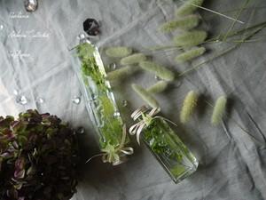 母の日 フレッシュグリーン ハーバリウム ロングタイプ