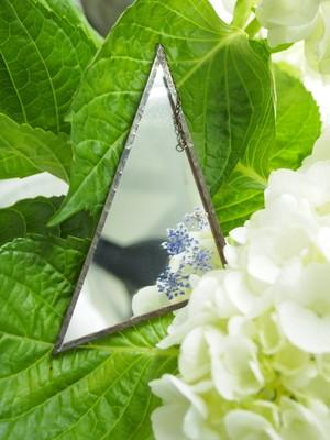 HACOMIDORI 植物絵画(mirror) レースフラワー