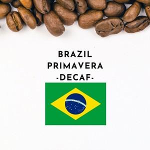 BRAZIL PRIMAVERA CAFFEINELESS(ブラジル プリマベーラ農園 カフェインレス)100g