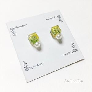 押し花キューブ型ピアスパール付き(小)