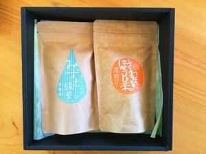 【夏の贈りもの】簡単!水出し茶セット