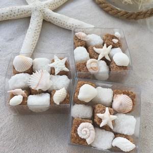 Sugar Cube - beach -  10セット〜