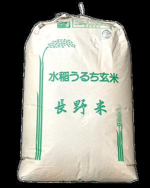 30年産長野松川村産こしひかり(玄米)25kg